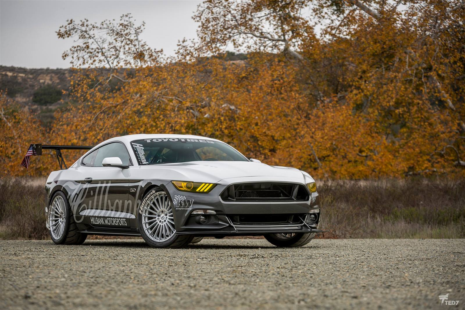 Ford Mustang on TSW Turbina